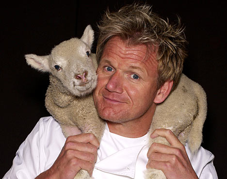 Gordon-Ramsay-animalisti